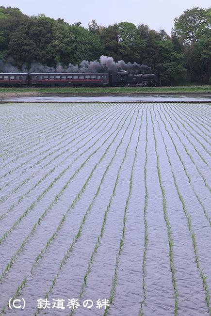 20120506真岡5D2