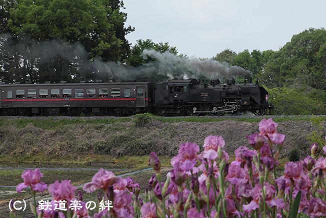 20120506折本5D2