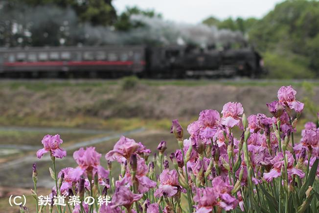 20120506折本