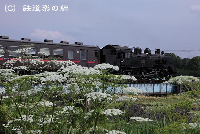 20120526七井5D2