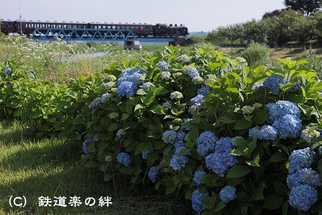 20120617益子
