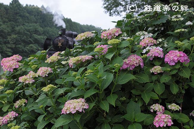 20120617久下田