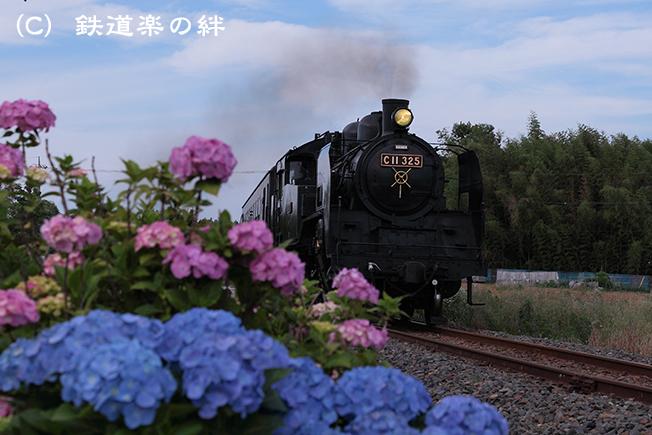 20120617寺内