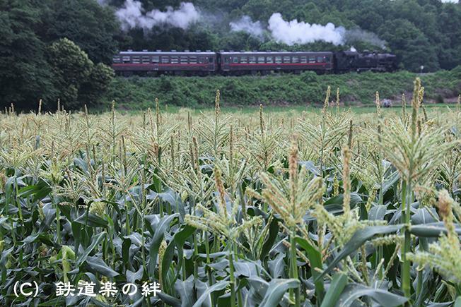 20120617折本