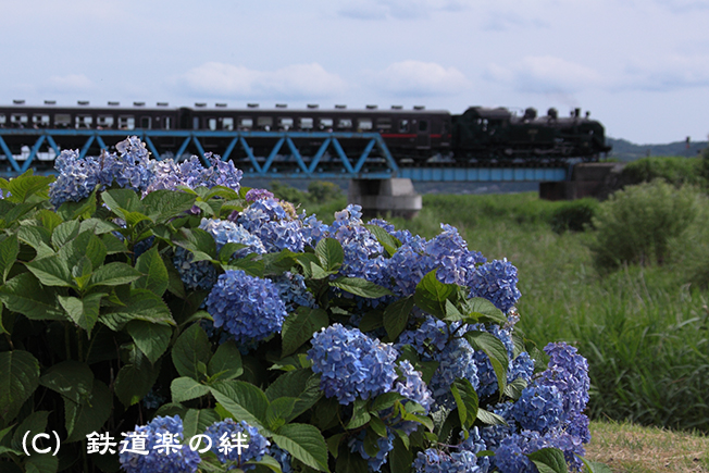20120630益子02