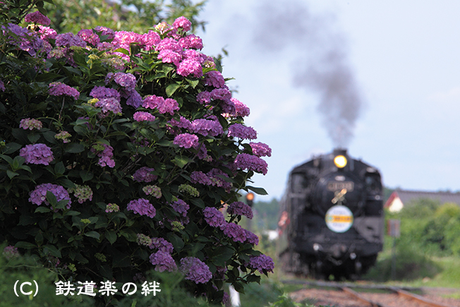 20120630寺内02