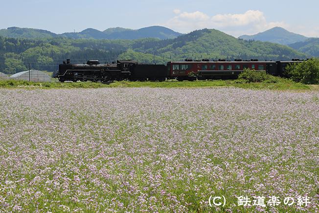 20160514野沢