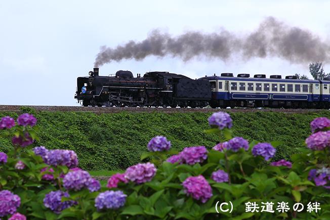 20120708五泉5D2