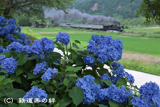 20120714上野尻025D2