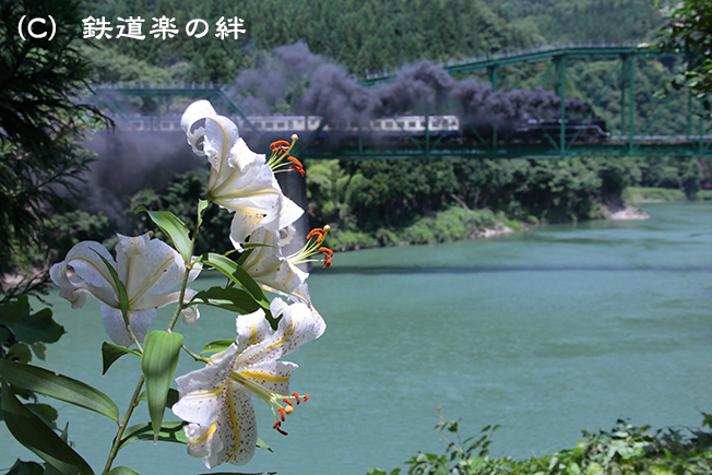 20120721徳沢015D2