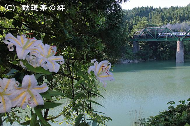 20120721徳沢025D2