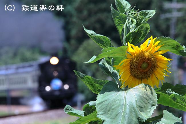 20120721日出谷015D2