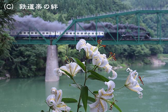 20120722徳沢015D2