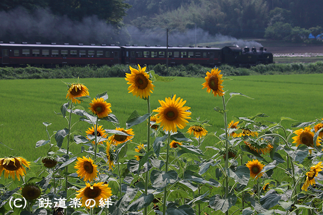 20120728笹原田5D2