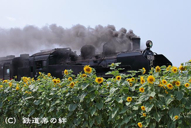 20120728七井5D2