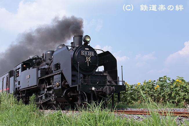20120728七井025D2