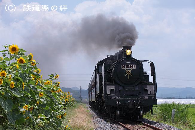 20120803七井5D2