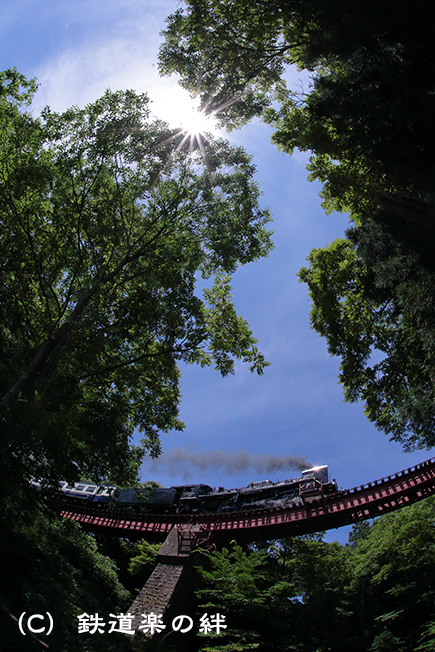 20120804荻野5D2