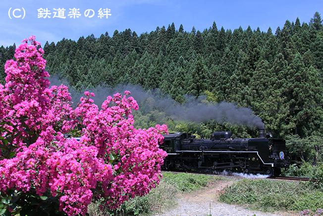 20120804津川5D2