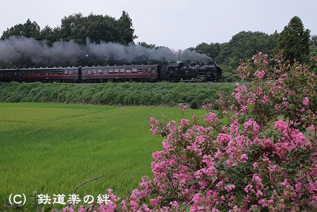 20120810折本5D2