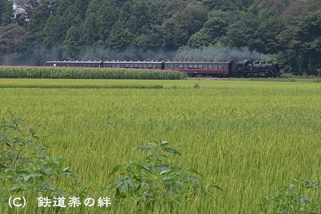 20120810真岡5D2