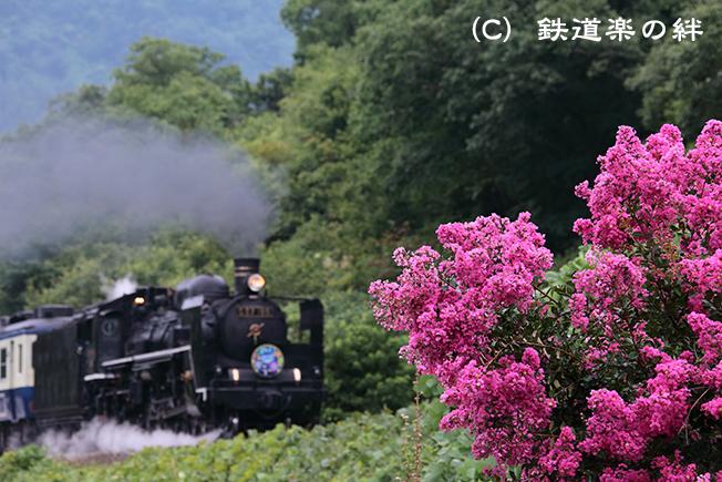 20120811荻野5D2