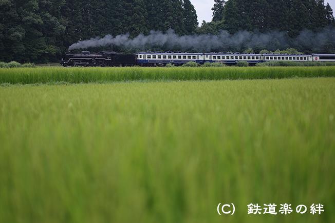 20120811野沢5D2