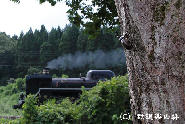 20120812三川015D2