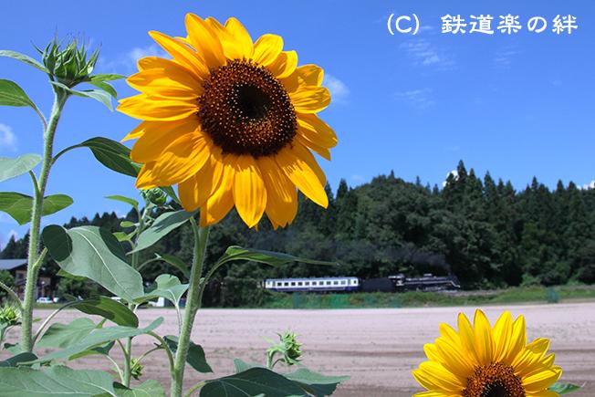20120818野沢015D2