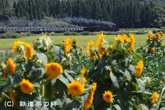 20120826上野尻5D2