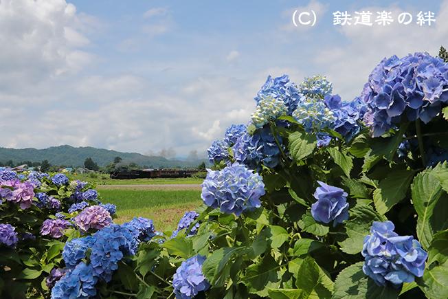 20160710上野尻011DX2