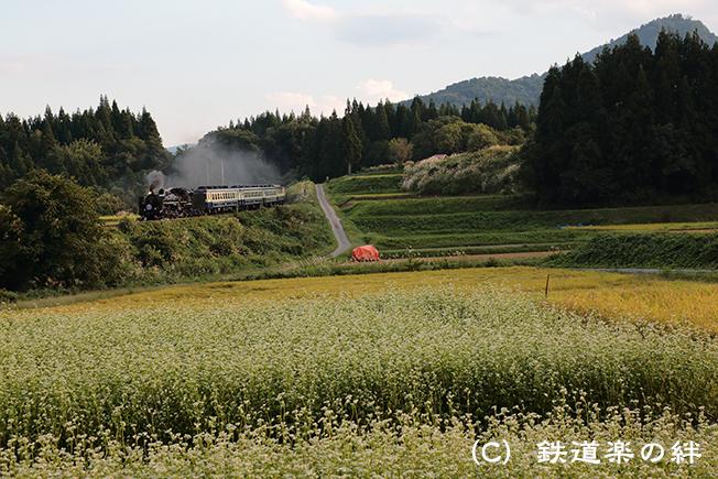 20120915上野尻015D3