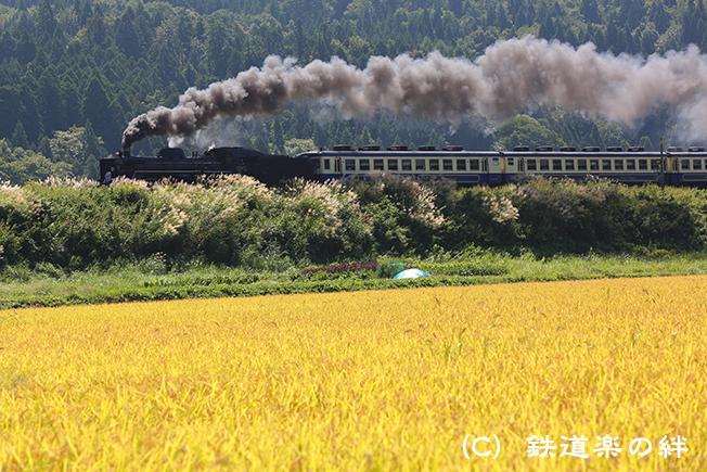 20120916鹿瀬025D3