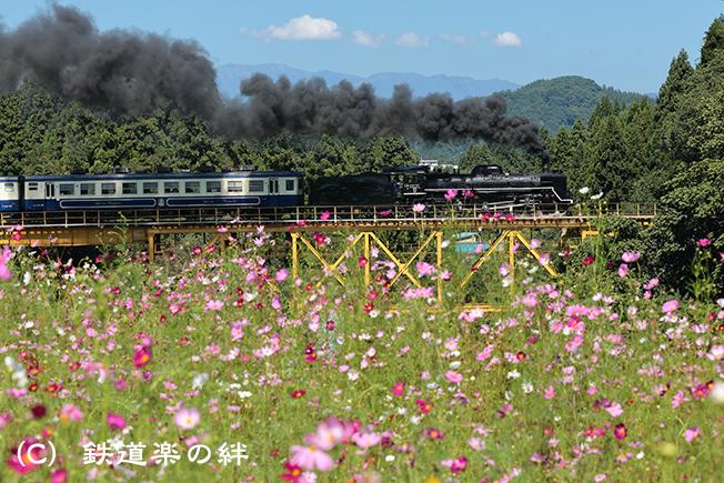 20120916野沢5D3