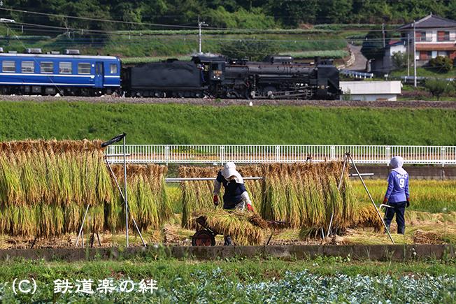 20120922敷島045D3