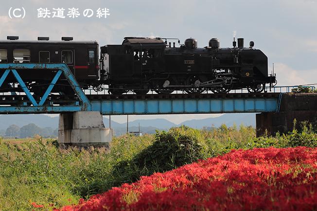20120930益子025D3