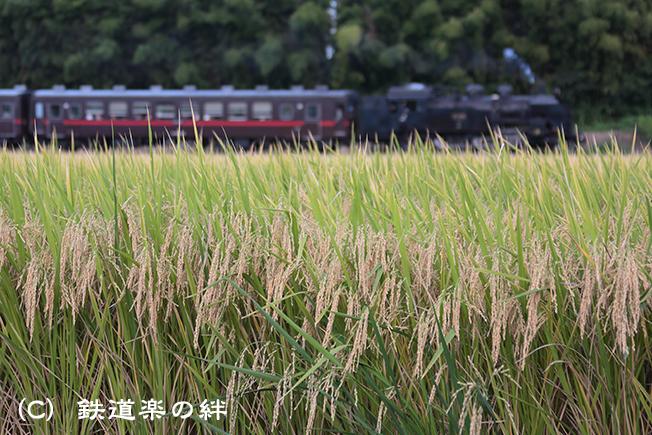 20120930折本5D3