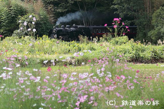 20120929市塙5D3