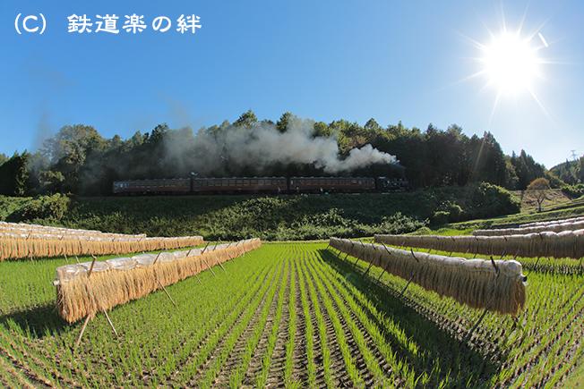 20121004天矢場035D3