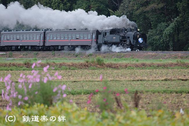 20121007真岡5D3