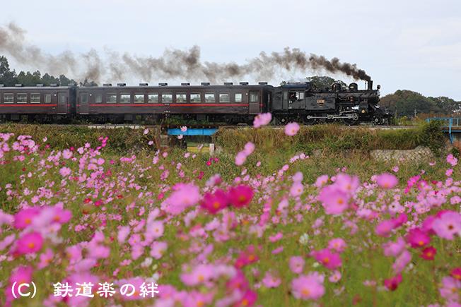 20121010益子015D3