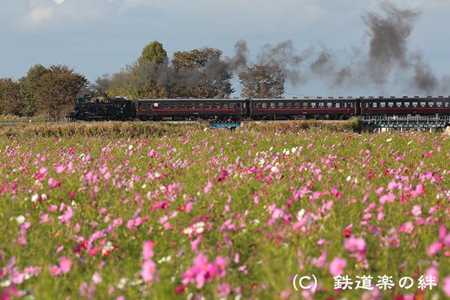 20121010益子045D3