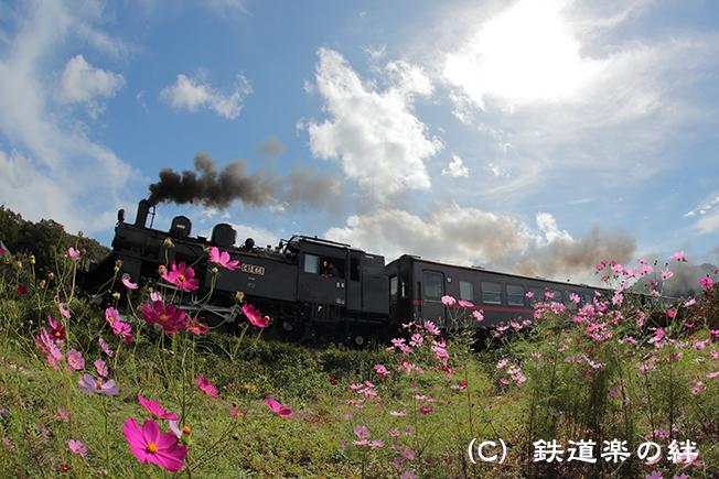 20121010市塙5D3