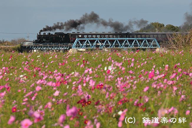20121010益子035D3