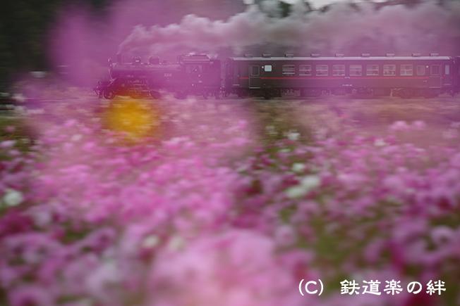 20121020益子035D3