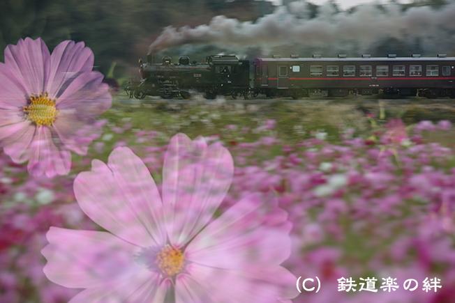 20121020益子045D3