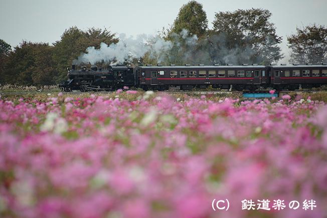 20121020益子075D3