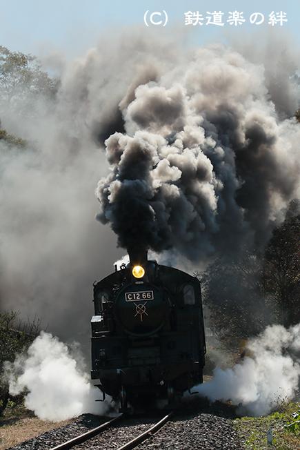 20121103多田羅035D3