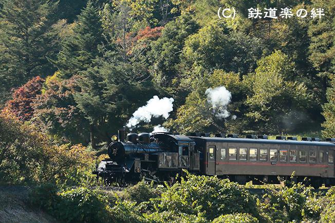 20121103天矢場5D3