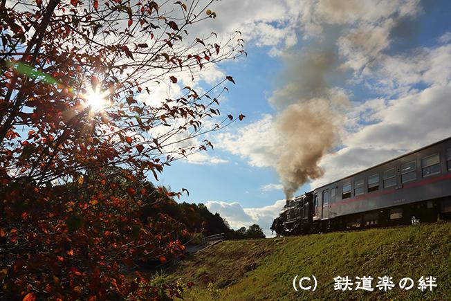 20121103茂木5D3